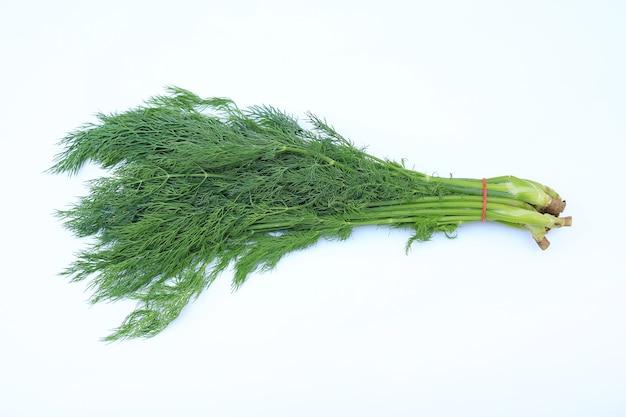 Fresco di aneto verde mazzo isolato su sfondo bianco.