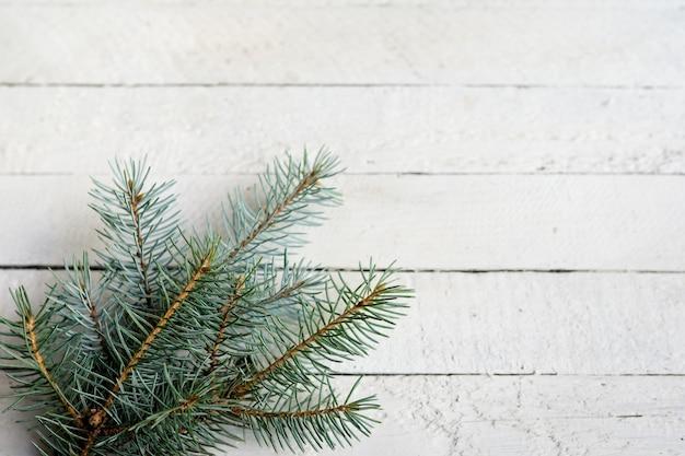 Rami verdi freschi dell'abete su fondo di legno bianco