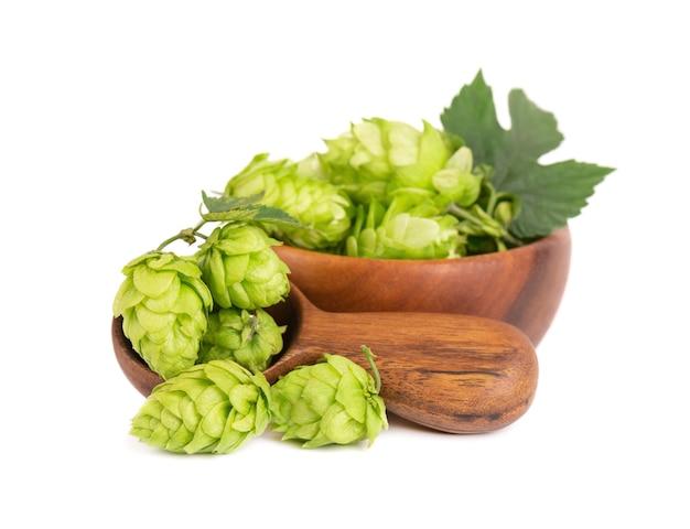 Ramo di luppolo fresco verde in ciotola di legno e cucchiaio isolato su uno sfondo bianco coni di luppolo con foglia