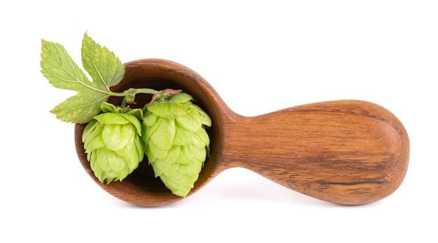 Ramo di luppolo verde fresco in cucchiaio di legno, isolato su sfondo bianco. coni di luppolo con foglia. fiori di luppolo biologici. avvicinamento.