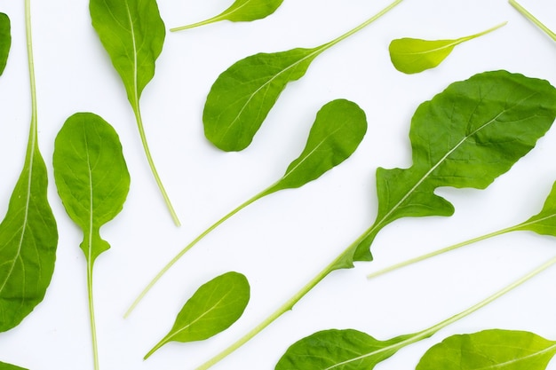 Insalata di rucola fresca verde su sfondo bianco.
