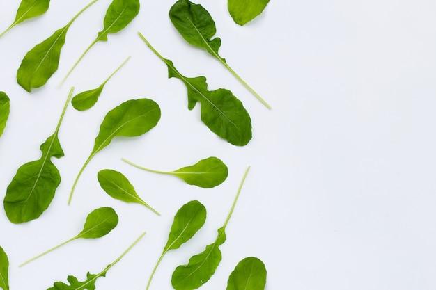 Insalata di rucola verde fresca sulla superficie bianca.