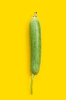 Zucca spugna verde fresca o orza su sfondo giallo.