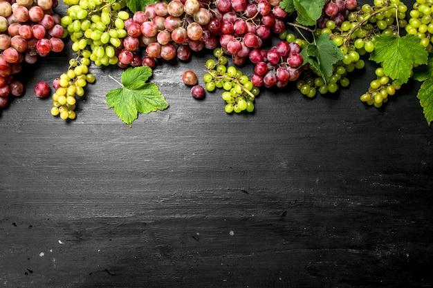 Raccolto fresco di uve rosse e verdi. sulla lavagna nera.