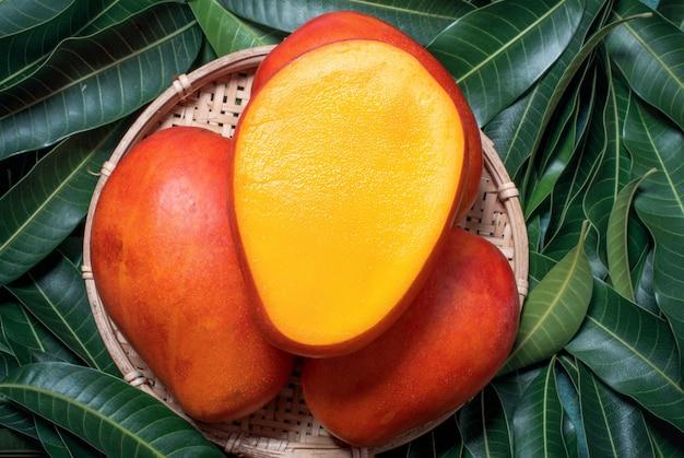 Frutto di mango bello succoso fresco in canestro di legno di bambù su foglie verdi