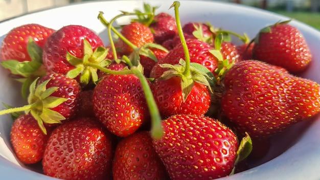Fragole organiche saporite mature succose fresche in una vecchia ciotola del metallo all'aperto un giorno di estate soleggiato. bacche fresche rosse fragola e frutta succosa dolce.