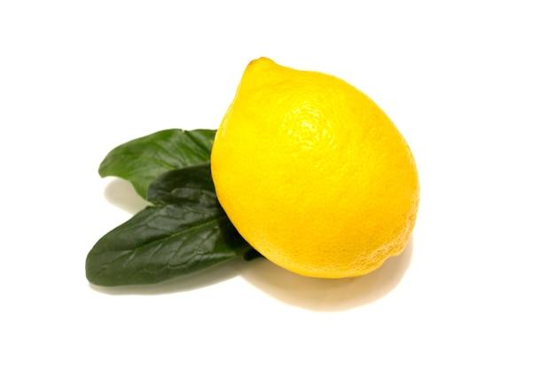 Limone fresco con foglie di menta. isolato su sfondo bianco. foto di alta qualità
