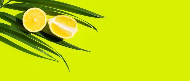 Limone fresco su foglie di palma tropicali su sfondo verde.