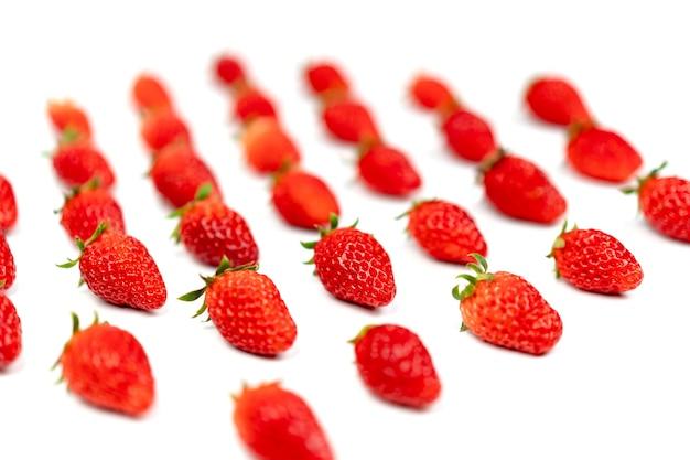 Le fragole fresche di lusso sono disposte nella fila