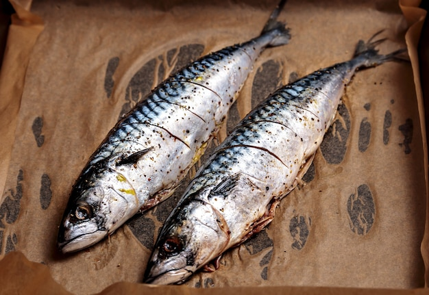Sgombro fresco. pesce intero crudo per griglia o barbecue delizioso pesce scomber per barbecue da ristorante