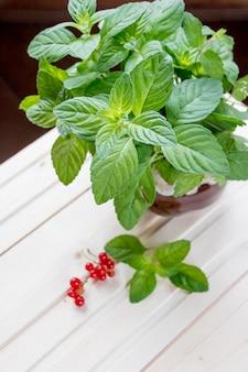 Foglie di menta fresca e bacche estive su fondo di legno bianco. foglie di menta luminose e gustose bacche rosse
