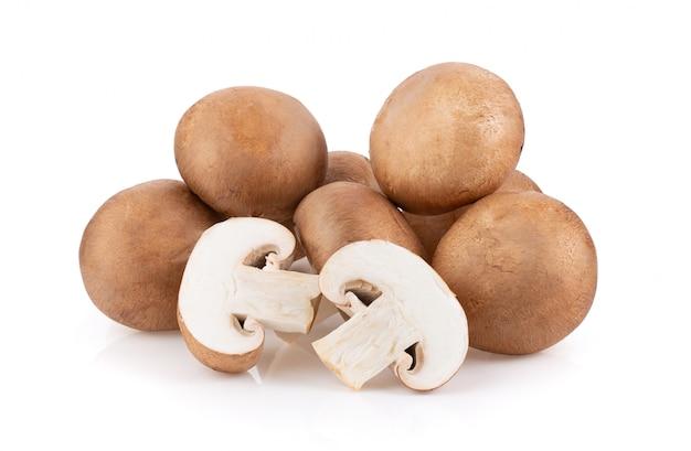 Funghi freschi sul muro bianco.