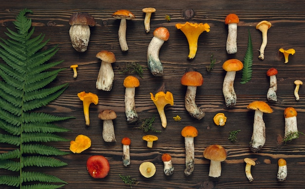 Funghi freschi su fondo rustico di legno