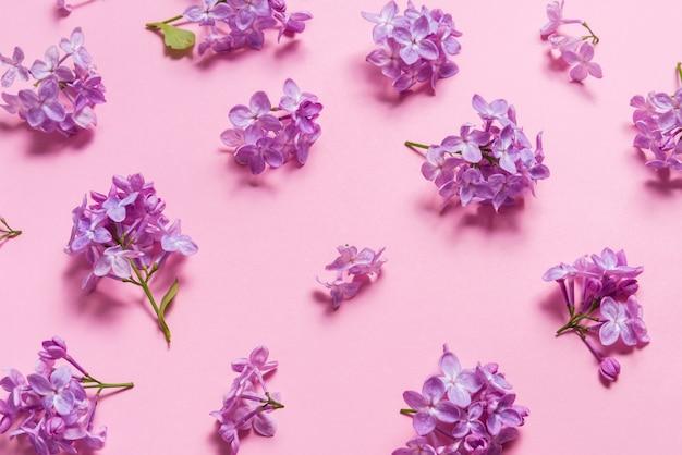 Fiori lilla naturali freschi sulla tavola rosa