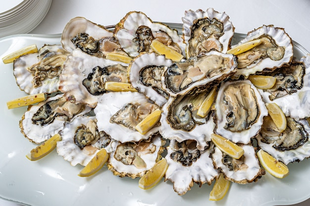 Ostrica aperta fresca su un piatto bianco. nell'antipasto del ristorante