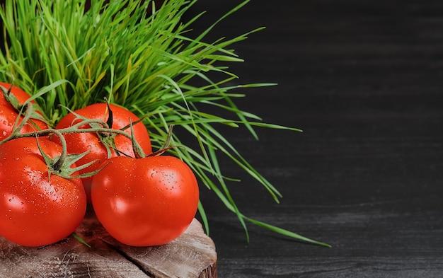Pomodori rossi organici freschi con gocce d'acqua su sfondo di erba, sfondo nero. messa a fuoco selettiva, copia spazio per il testo. cibo sano, prodotti agricoli genuini
