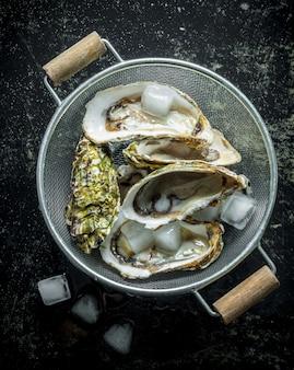 Ostriche fresche in uno scolapasta con ghiaccio. sul tavolo rustico scuro