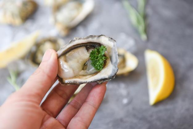 Frutti di mare freschi delle ostriche a disposizione su un fondo della banda nera - guscio di ostrica alto vicino