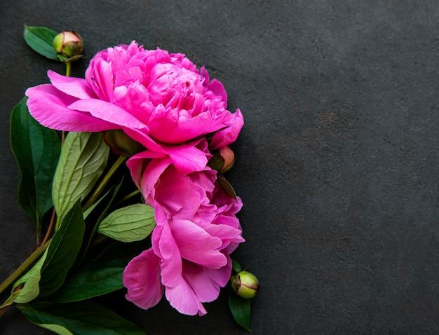 Confine di fiori di peonia rosa fresca con copia spazio su sfondo nero, piatto laici.