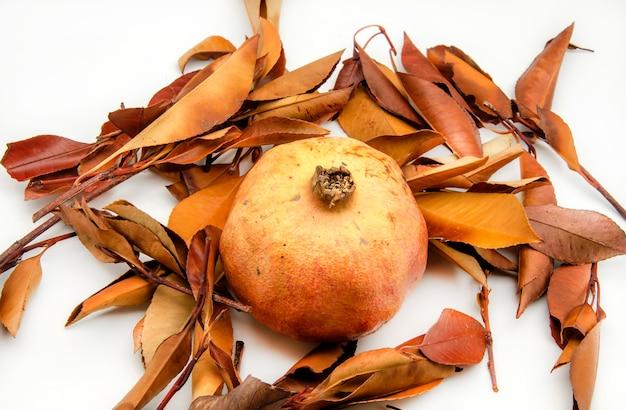 Melograni freschi su sfondo di foglie di autunno