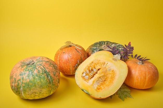 Zucca fresca su sfondo giallo, zucca tagliata a metà e alcune zucche insolite su foglie autunnali gialle