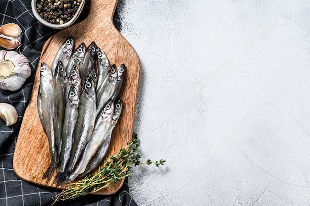 Odore di pesce di mare crudo fresco. sfondo grigio. vista dall'alto. copia spazio