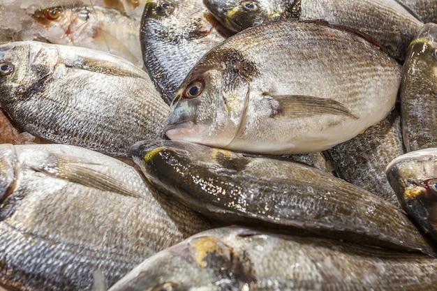 Pesce intero di tilapia crudo fresco diverso refrigerato su ghiaccio, al mercato del pesce.