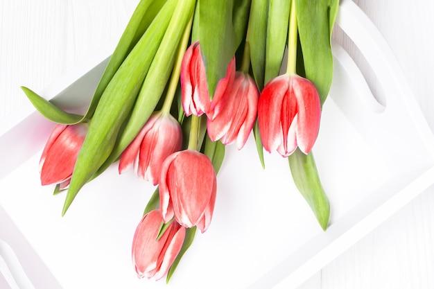 Fiori di tulipani rossi freschi
