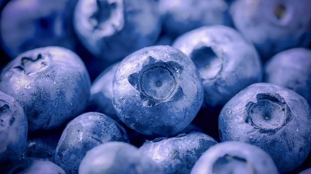 Mirtilli maturi freschi con il primo piano delle goccioline d'acqua, frutti di bosco deliziosi, prodotto dietetico