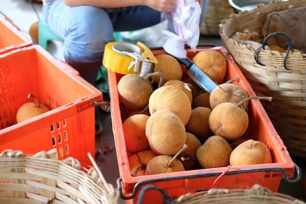 Merce nel carrello della frutta fresca di santol nell'azienda agricola