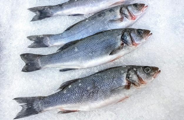 Il pesce fresco della spigola si trova su ghiaccio. vista dall'alto