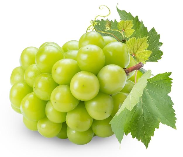 Uva fresca del moscato di lustro con il foglio isolato su bianco.