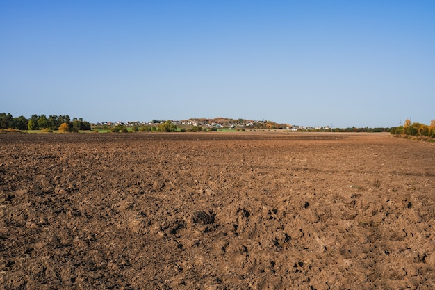 Terreno fresco, seminativo e cielo blu
