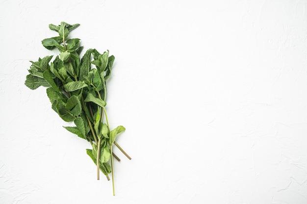 Menta fresca o foglie di menta incastonate, su pietra bianca