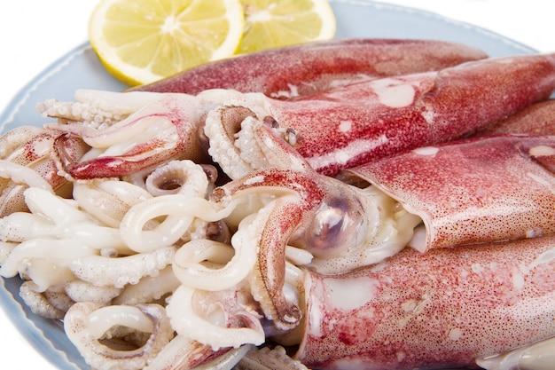 Calamari freschi isolati su sfondo bianco