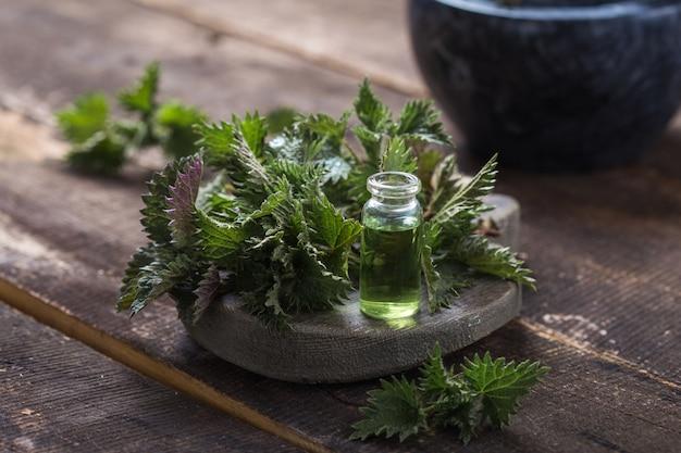 Foglie fresche dell'ortica bruciante sulla tavola di legno olio di urica di urica