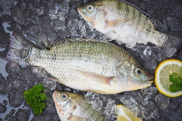 Pesce fresco di tilapia d'acqua dolce per cucinare cibo con prezzemolo e limone, tilapia cruda di fattoria