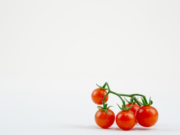 Pomodoro fresco sul bianco limpido