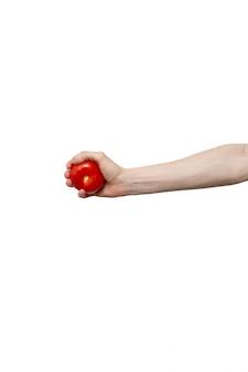 Pomodoro fresco tenuto in mano isolato sul muro bianco. uomo che tiene verdura