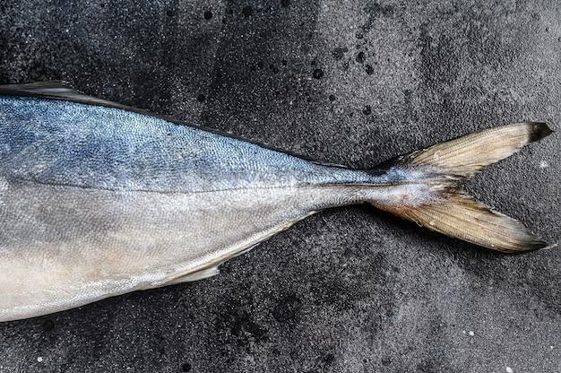 Ricciola di pesce gialla giapponese intera intera fresca