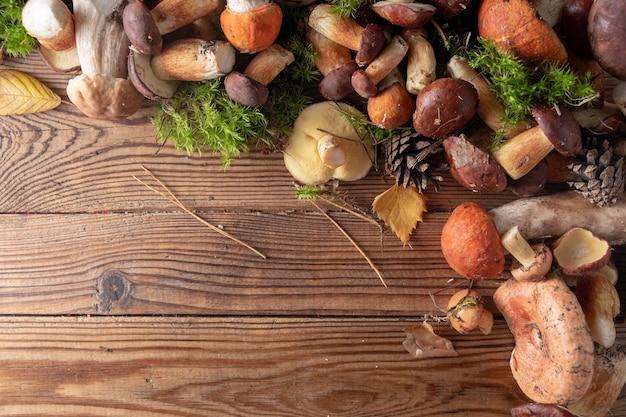 Funghi selvatici freschi diversi su un legno