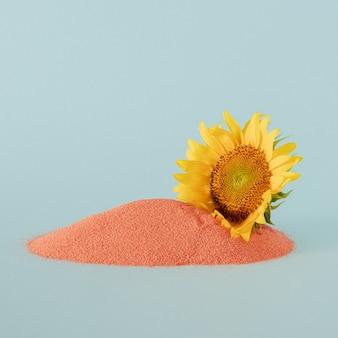 Girasole soleggiato giallo fresco sulla sabbia arancione su sfondo blu pastello. arte astratta. arte astratta tropicale minimale. idea di decorazione creativa
