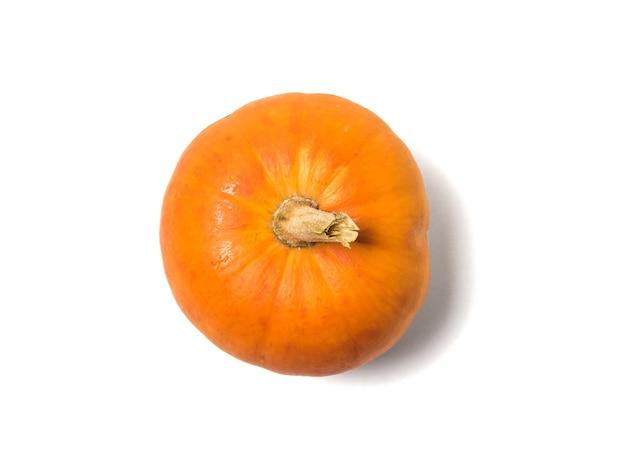 Zucca matura appena colta isolata su una priorità bassa bianca. frutto di zucca isolato.