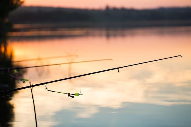 Pesca d'acqua dolce con canne da pesca in riva al laghetto