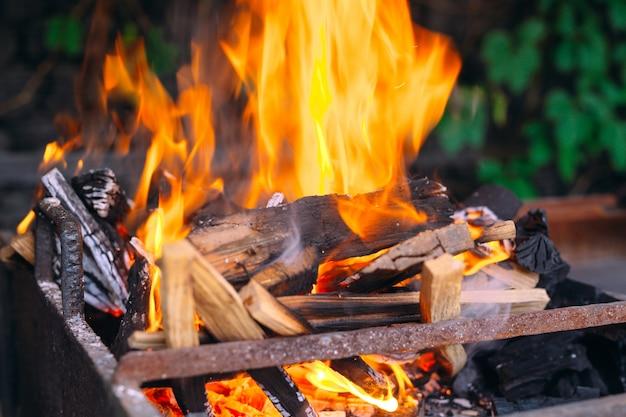 Fiamme brucianti di frewood sulla griglia del ferro con erba verde