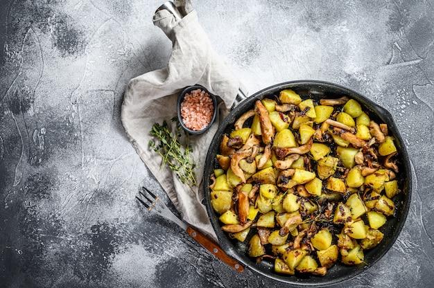 Funghi di ostrica fritti con le patate in una pentola. sfondo grigio. vista dall'alto. spazio per il testo