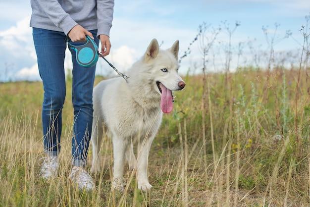 Camminata del husky delle donne e dei cani, dell'adolescente e dell'animale domestico di amicizia all'aperto