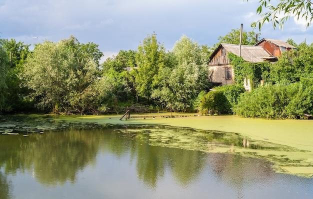 Vista frontale lago di palude in ucraina