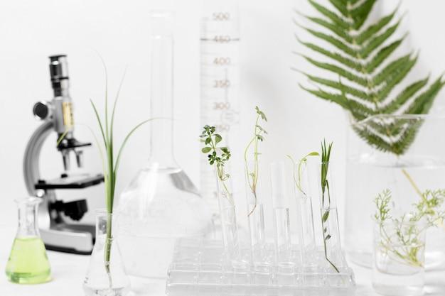 Vista frontale del concetto di scienza