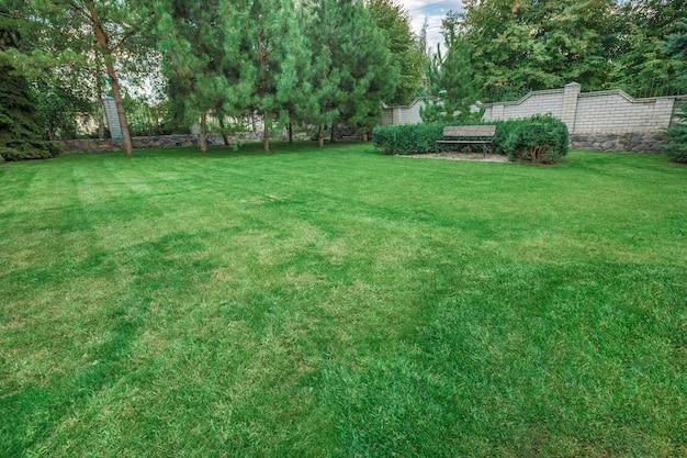 Cortile anteriore che abbellisce un cortile ben curato con un giardino pieno di piante perenni e annuali